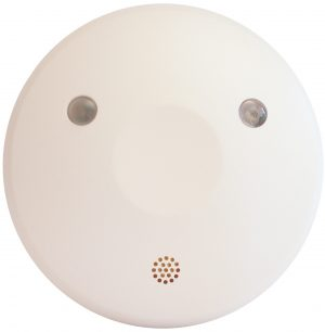 MessPC Sensor Rauch